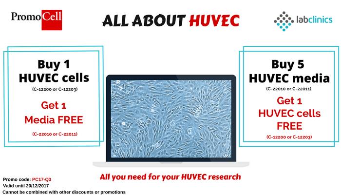 huvec cell line, huvec angiogenesis assay, huvec dmem, huvec adhesion assay, HUVEC, angiogenesis, estudio HUVEC,