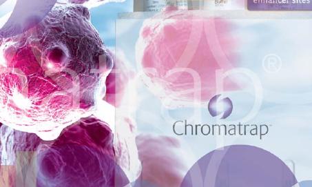 Epigenética, Chromatrap, ChIP, cromatina, inmunoprecipitación cromatina