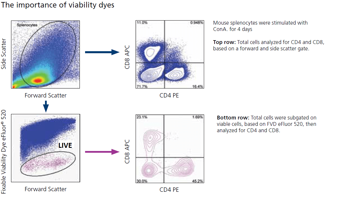 the importance of Fixable viability dyes FVD invitrogen eBioscience