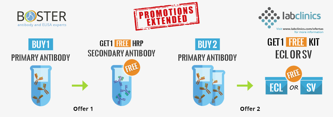 Buy_Primary_antibody_Get_Secondary_Free_Boster