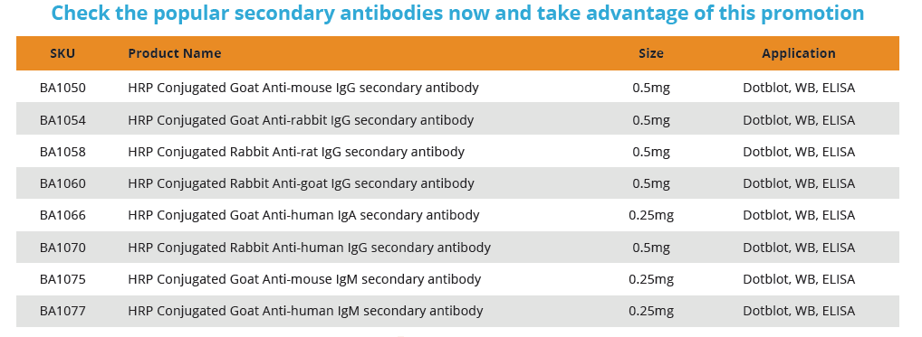 HRP secondary conjugated antibodies
