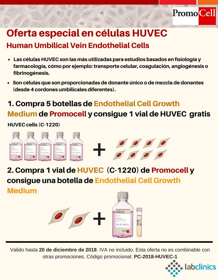 promocell, oferta, promoción, HUVEC, cultivo primario, cultivo celular, in vitro