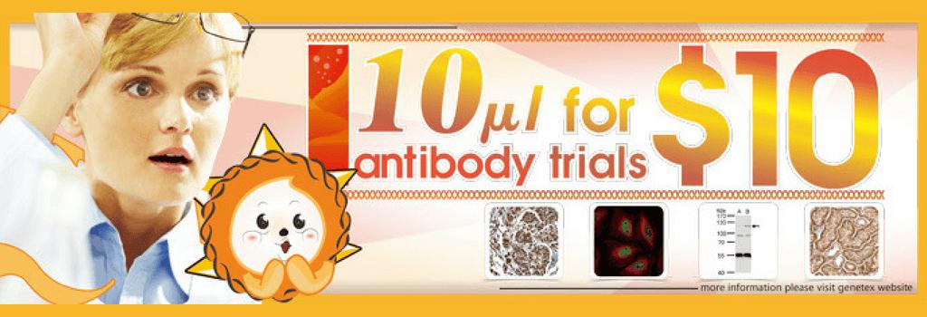 promoción, oferta, testaje, muestra, anticuerpo, GeneTex, primario, Western blot, IHC, ICC