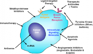 Small molecule inhibitors as cancer therapeutics | Labclinics