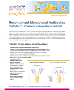 Recombinant; Monoclonal; Antibodies; RecMAbs™; Produced; No Use of Animals; Adipogen